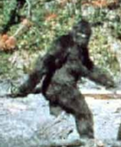 patterson_bigfoot[1]